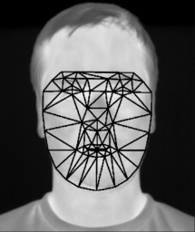 Gesichtserkennung im Thermalbild